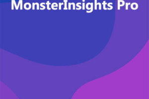 MonsterInsights Pro