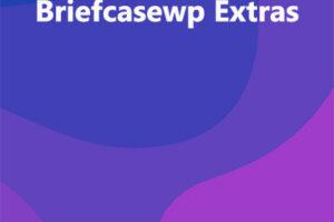 Briefcasewp Extras