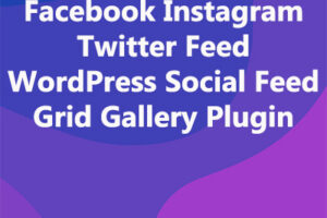 Facebook Instagram Twitter Feed WordPress Social Feed Grid Gallery Plugin